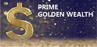 PRIME GOLDEN WEALTH